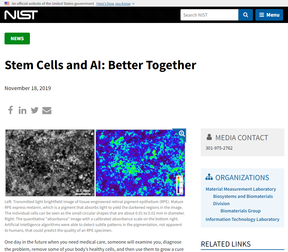 Stem Cells and AI
