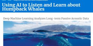 Using AI to Listen and Learn about Humpback Whales